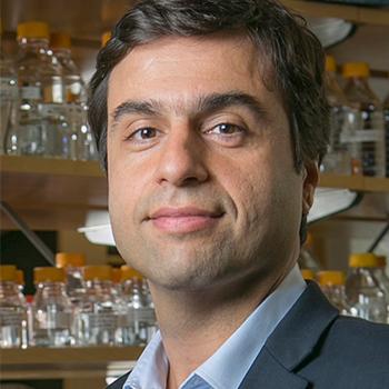 picture of Prof. Al-Hashimi